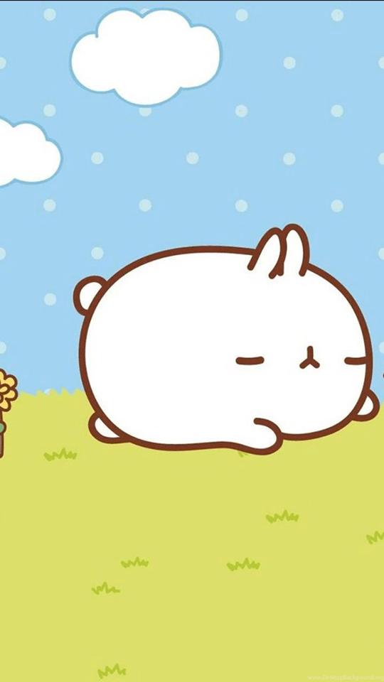 Download Gratis Kartun Lucu Kelinci Wallpaper Gratis Kartun Lucu