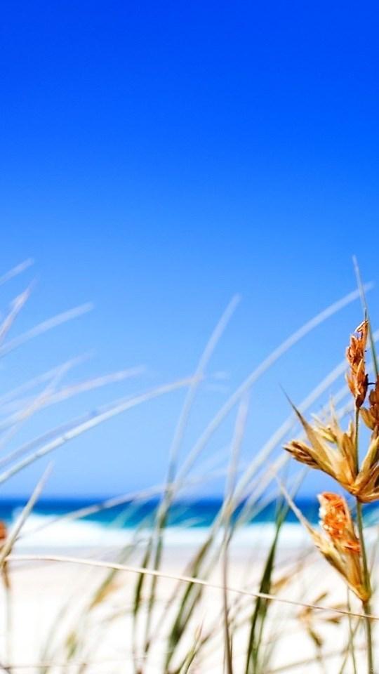 Iphone 11 Wallpaper Beach