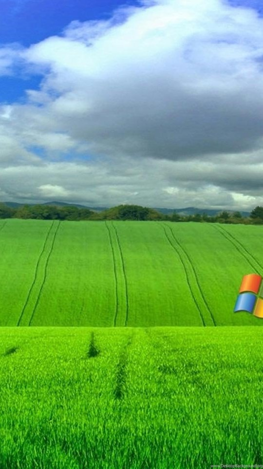 Free Wallpapers For Windows Xp Wallpapers Cave Desktop