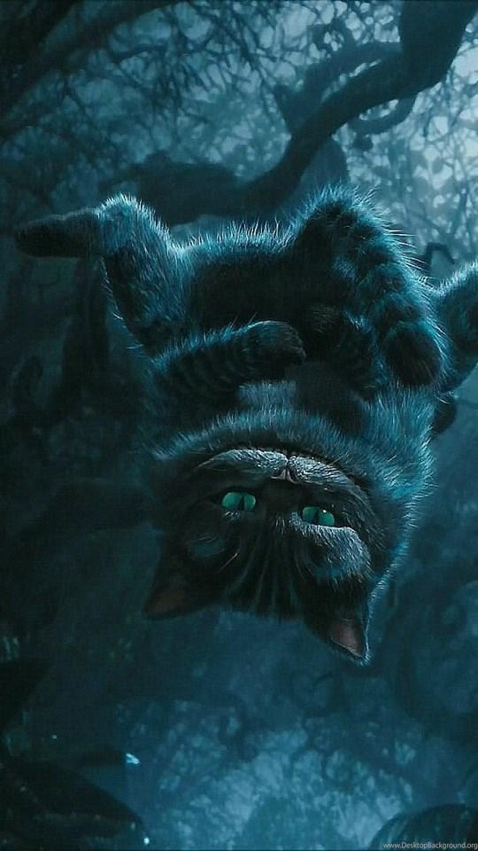 Cheshire Cat Cartoon Cute Wonderland 1920x1080 Hd Wallpapers