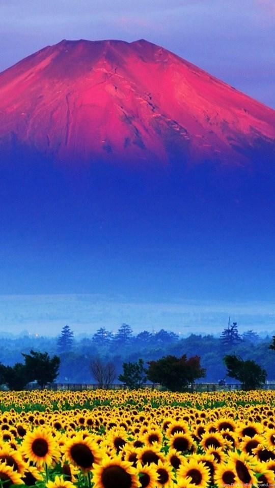 fuji mountain japan landscape wallpapers hd free download