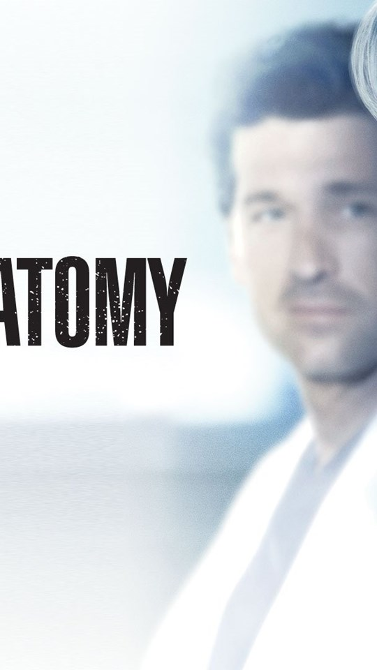Perfect Greys Anatomy Hd Festooning - Anatomy And Physiology Biology ...
