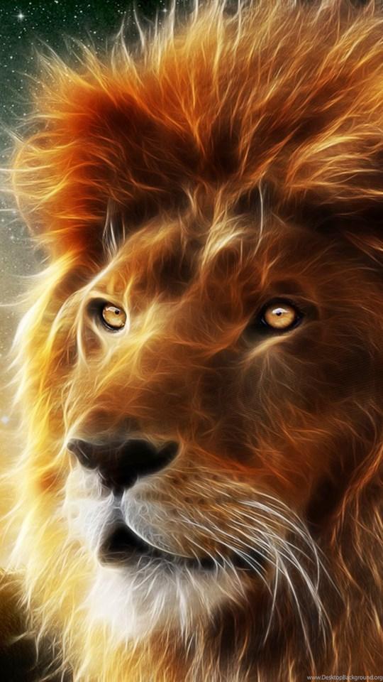 Lion 3d Animal Wallpapers Hd Desktop Background