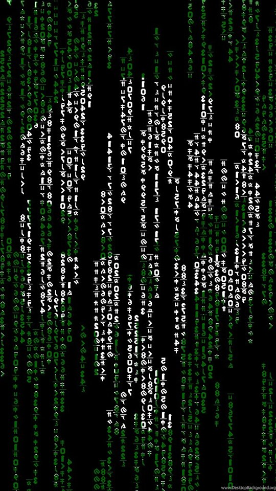 binary search code skeleton - 540×960
