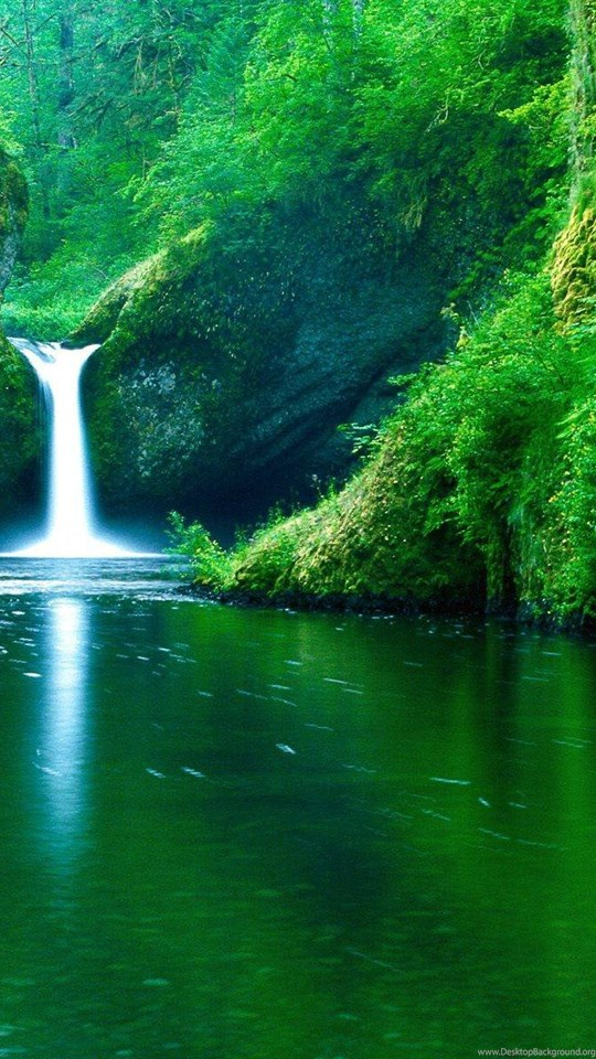 Nature Hd Wallpapers Realistic Backgrounds High Quality Bliz Pix