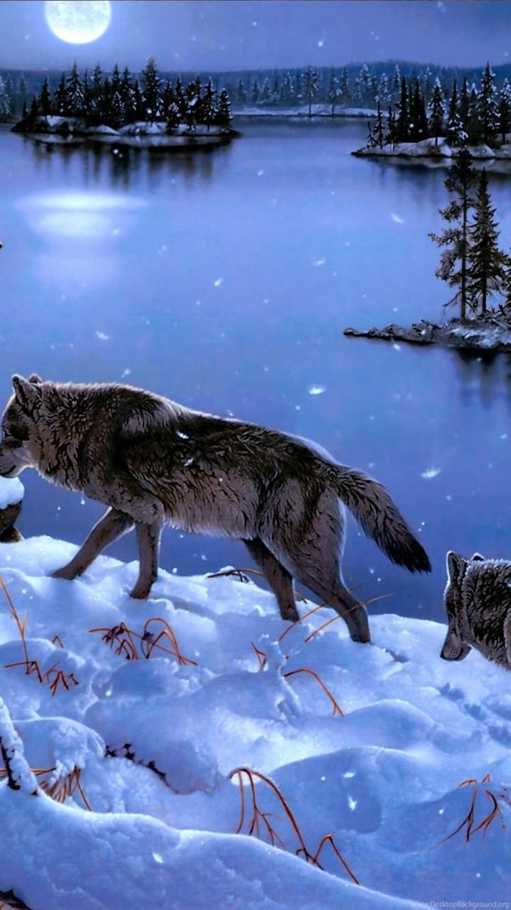 winter wolves hd wallpaper winter wolves images desktop