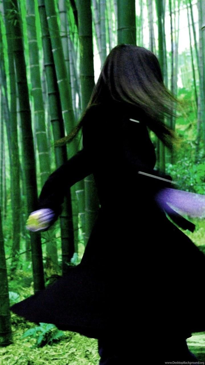 Movies: HOUSE FLYING DAGGERS Fantasy Drama Asian Martial
