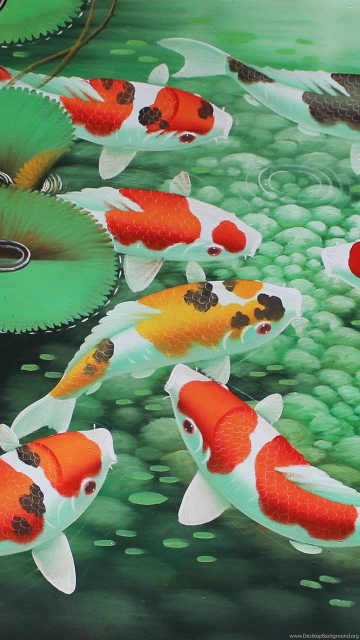 Koi Fish Iphone 5 Wallpaper