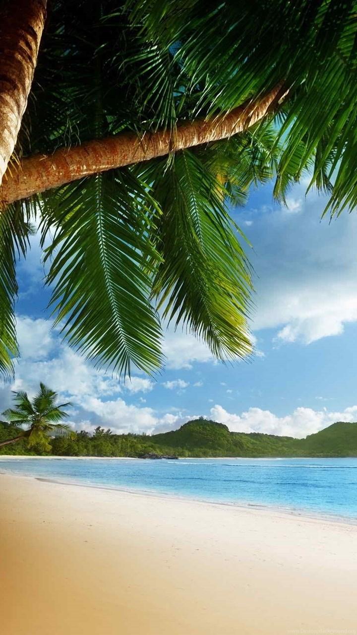 Caribbean hd desktop wallpapers desktop - Caribbean wallpaper free ...