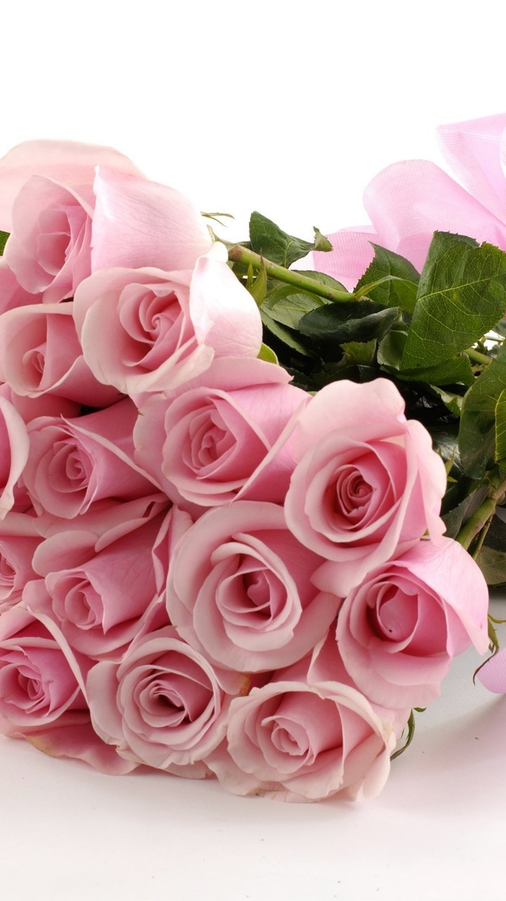 Pink roses hd wallpapers free download desktop background fullscreen voltagebd Gallery