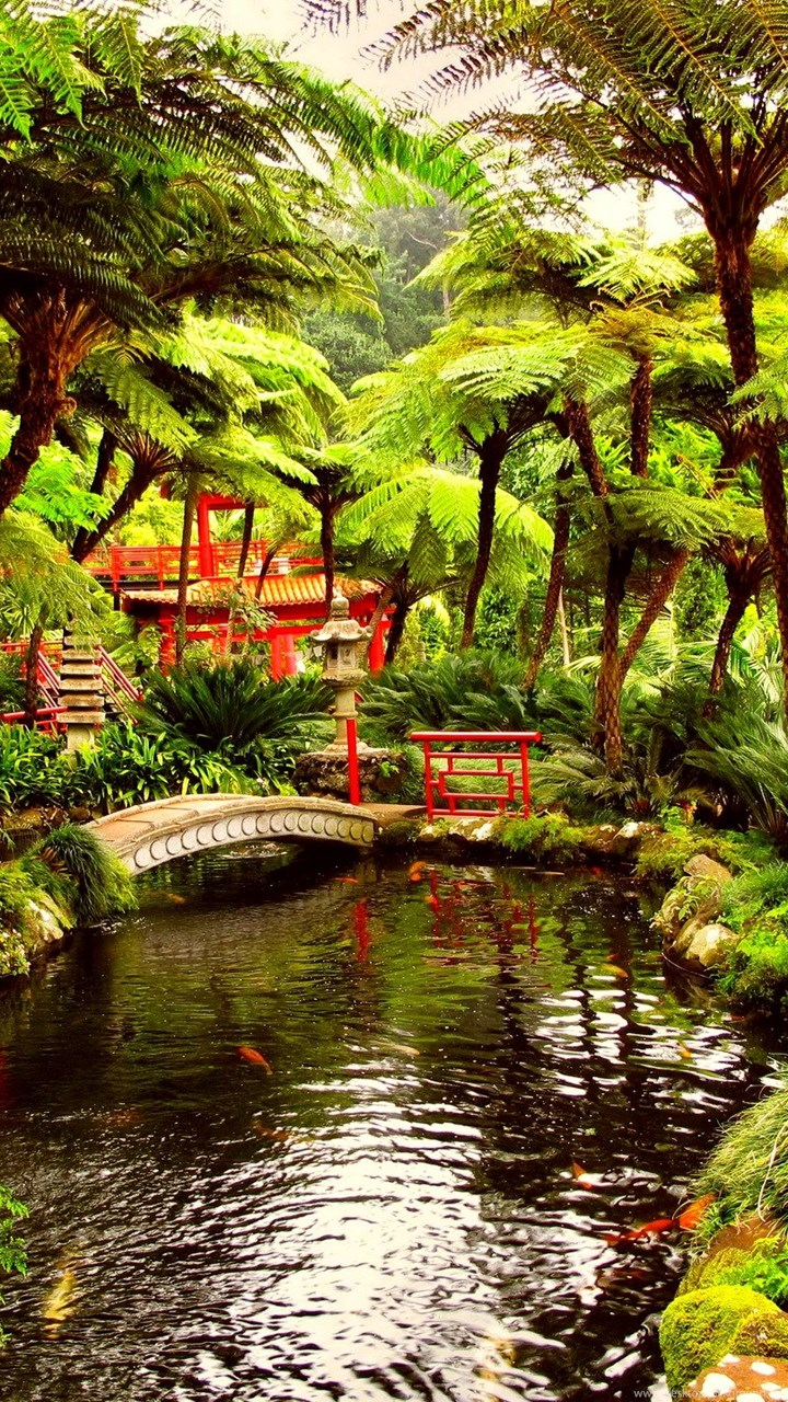 Japanese Garden Wallpapers: Gardens Wallpaper: Spring Japanese Garden Wallpapers HD