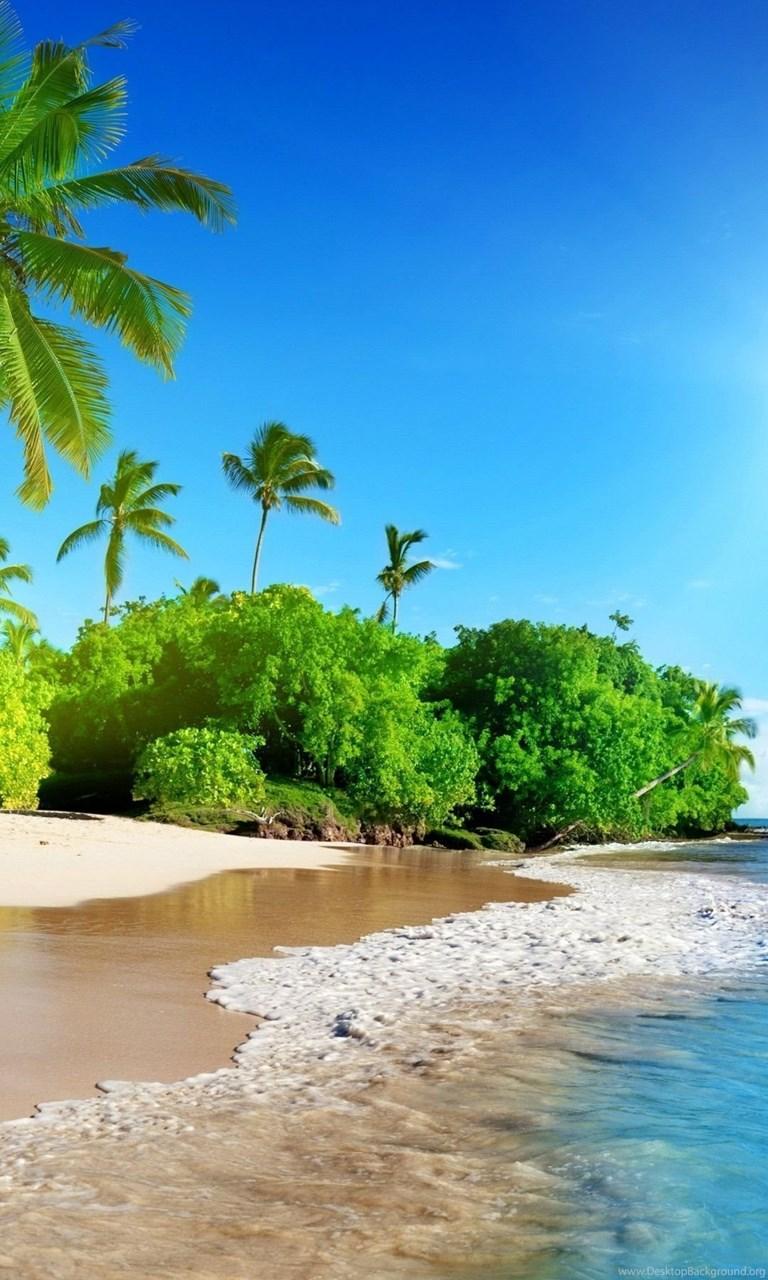 Beach Iphone Wallpaper For Iphone 6 Plus 1080x1920 Sunshine