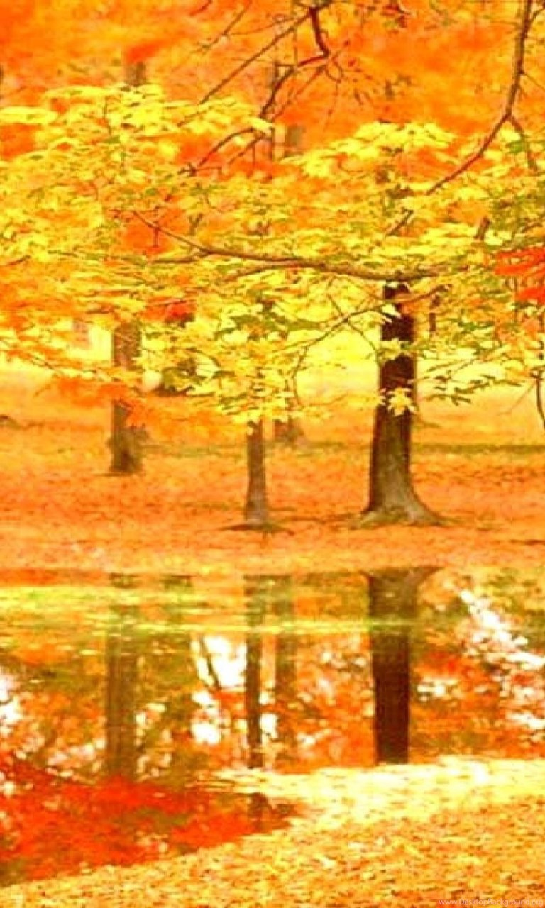 autumn in france wallpapers seasonal crazy frankenstein desktop
