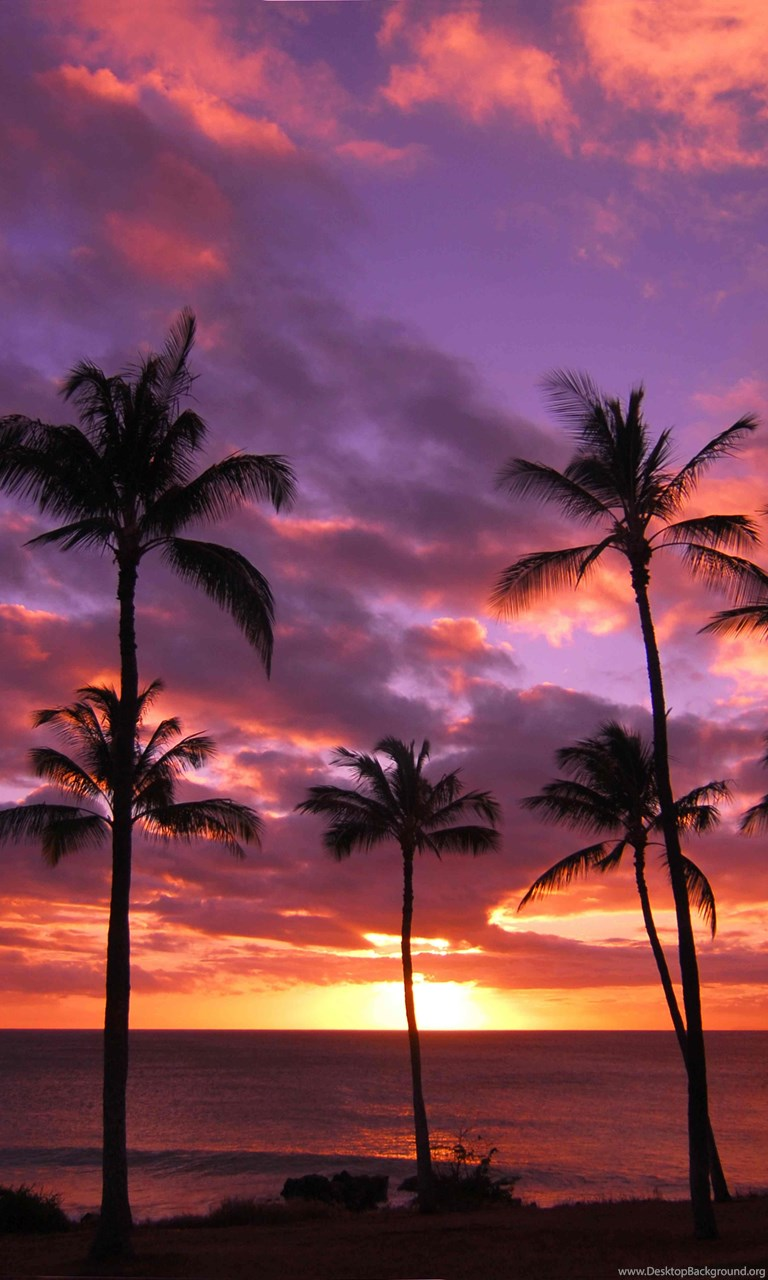 1280x854px Hawaii Sunset Free Wallpapers Desktop Background
