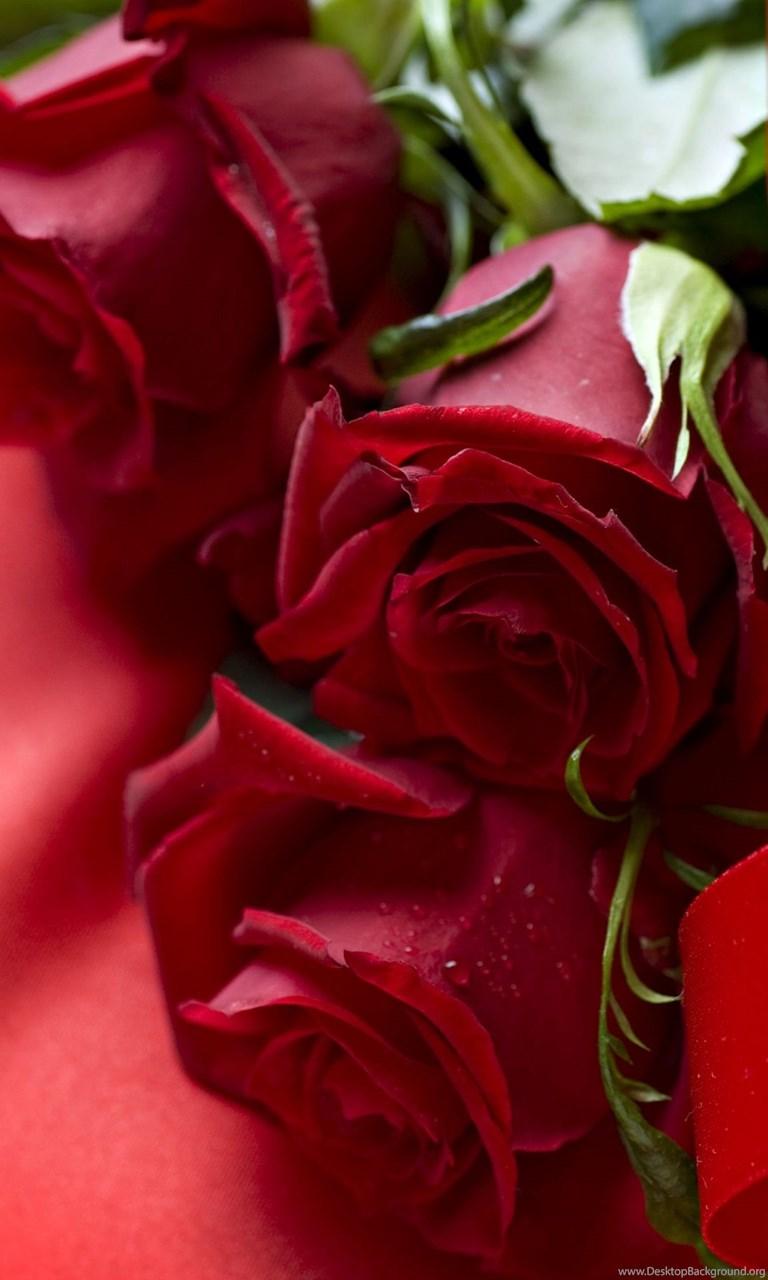 Beautiful 3d Red Rose Wallpaper Desktop Hd Wallpapers Download
