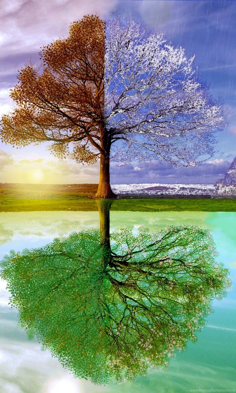 Changing Seasons Wallpapers Desktop Background