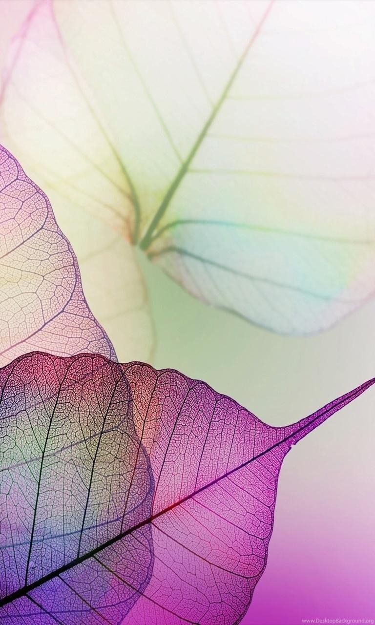 Samsung Mobile Hd Wallpapers Free Download Desktop Wallpapers Desktop Background