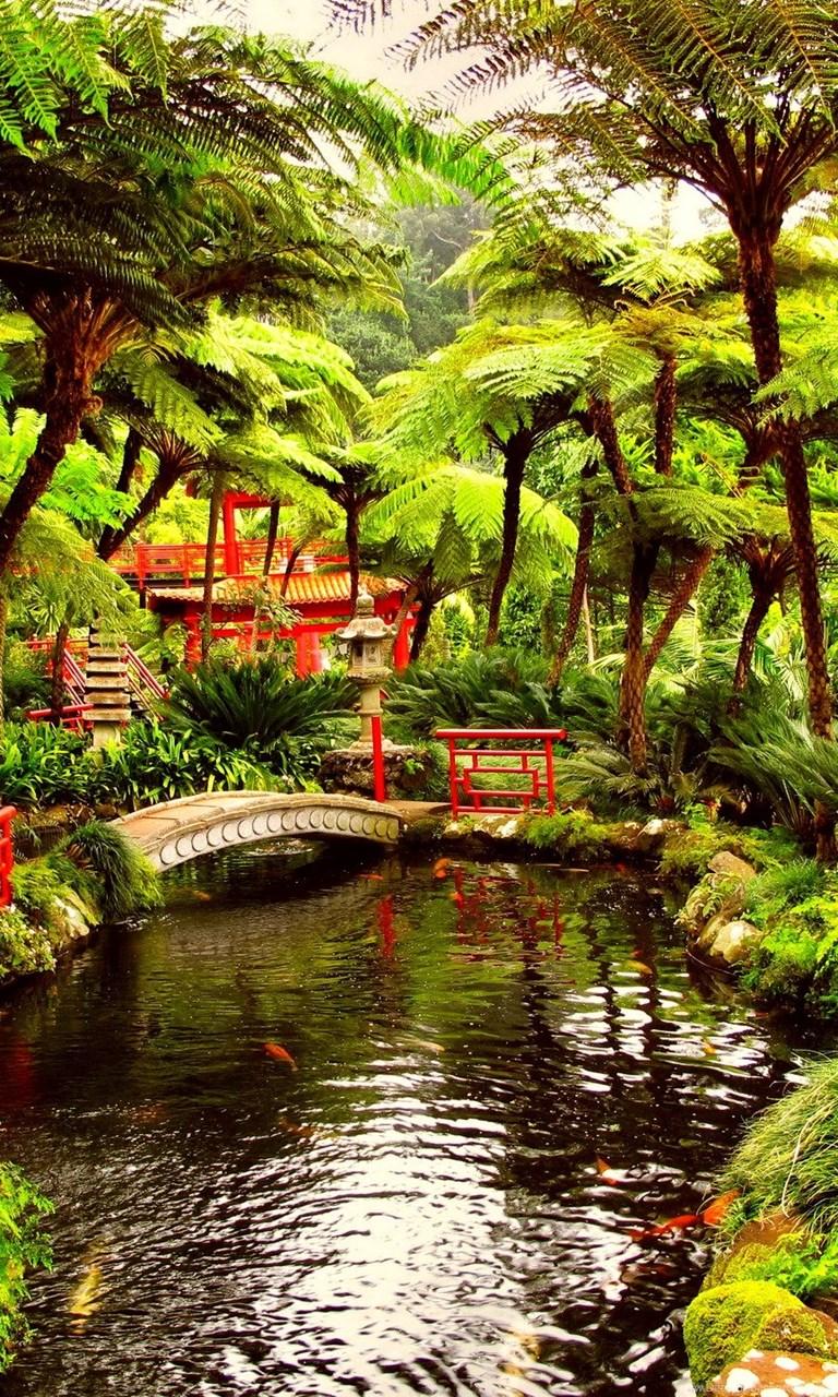 Spring Japanese Garden Wallpapers HD ...
