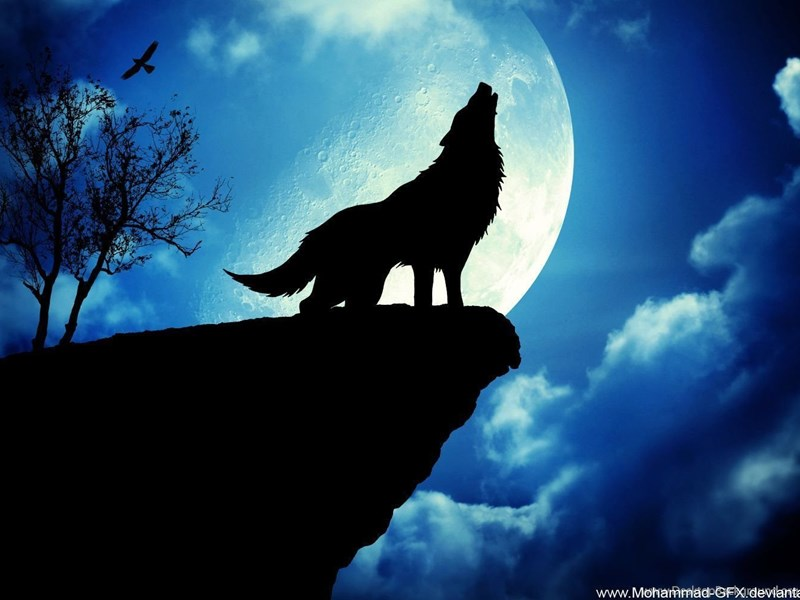 blood wolf moon meaning native american - photo #7