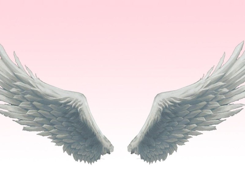 MMD Absolute BEST Angel Wings By Amiamy111 On DeviantArt