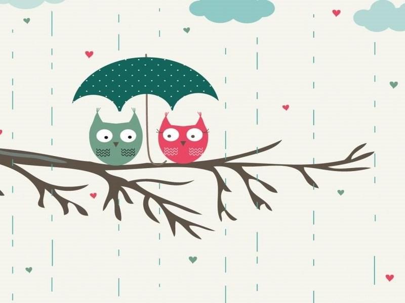 Top Cute Owl Wallpapers Desktop Images For Pinterest Desktop Background