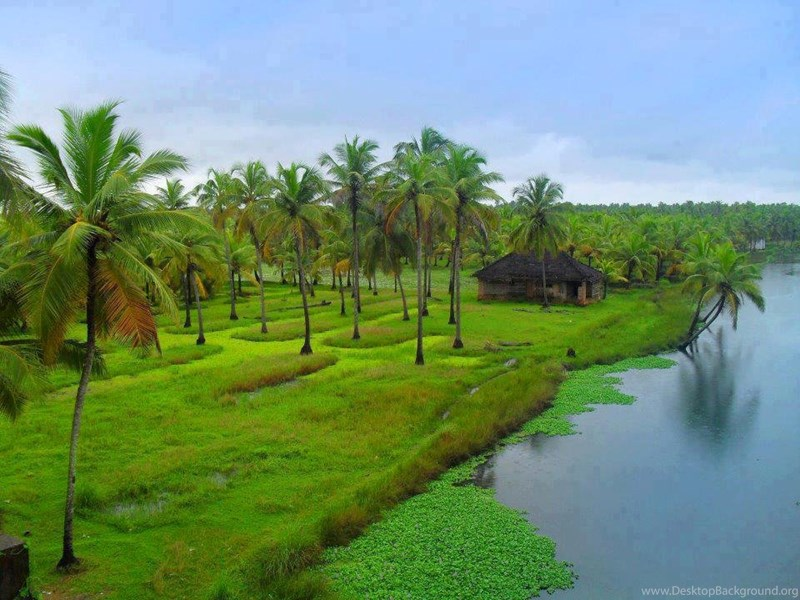 Kerala Nature Pictures Widescreen Hd Wallpapers Desktop Background