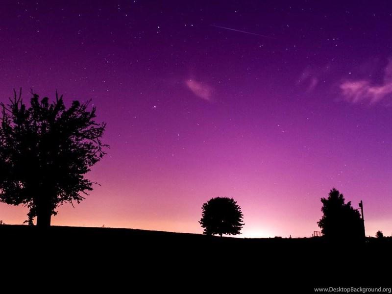 purple hd desktop wallpapers widescreen - photo #12