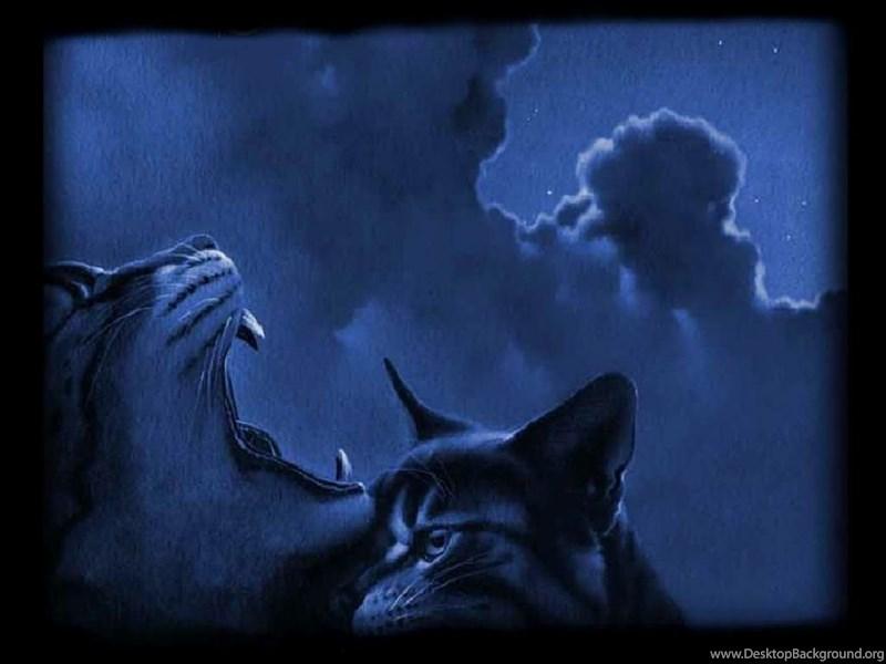 Warrior Cats Backgrounds Wallpapers Cave Desktop Background