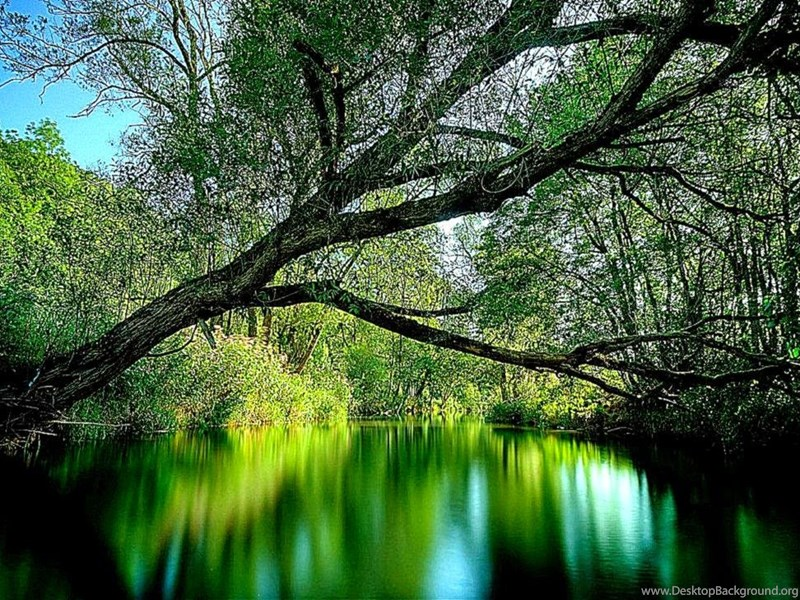 3D Nature Wallpapers Desktop For Windows 7 Background
