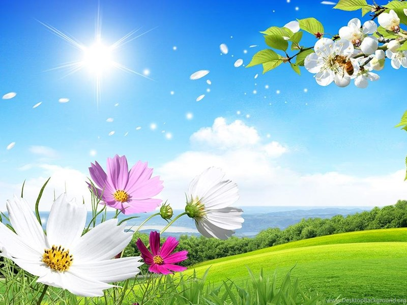 Spring Live Wallpapers Android Apps On Google Play Desktop