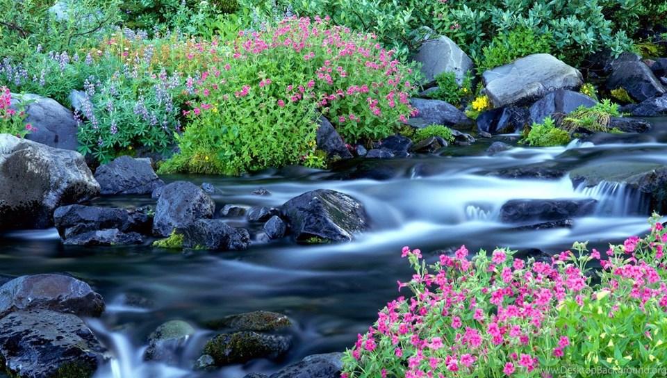 Free Beautiful Nature Wallpapers HD Download