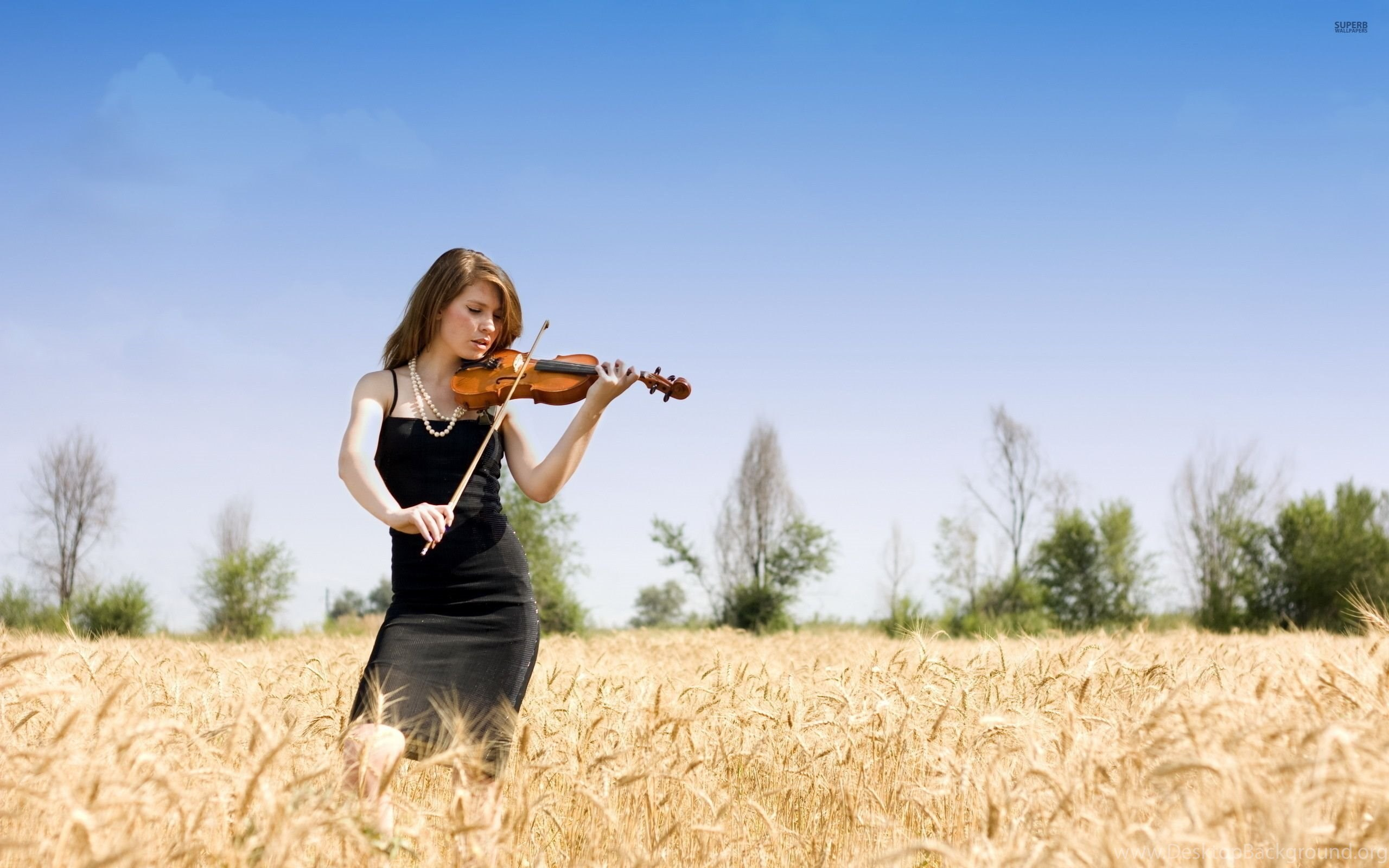Girl Playing At A Violin Wallpapers Girl Wallpapers Desktop Background