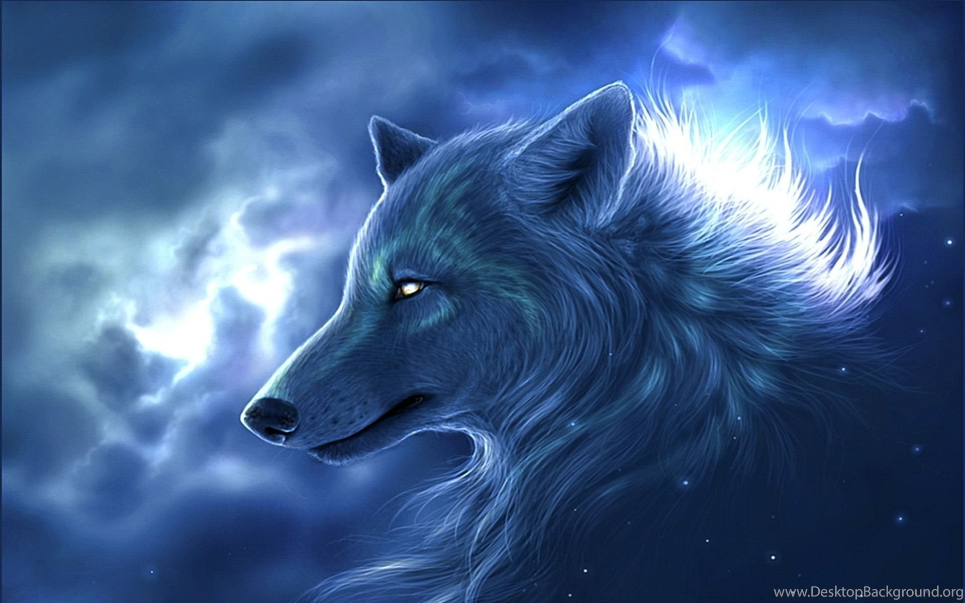 Cool Wolf Desktop Backgrounds Wallpaper Jpg Desktop Background