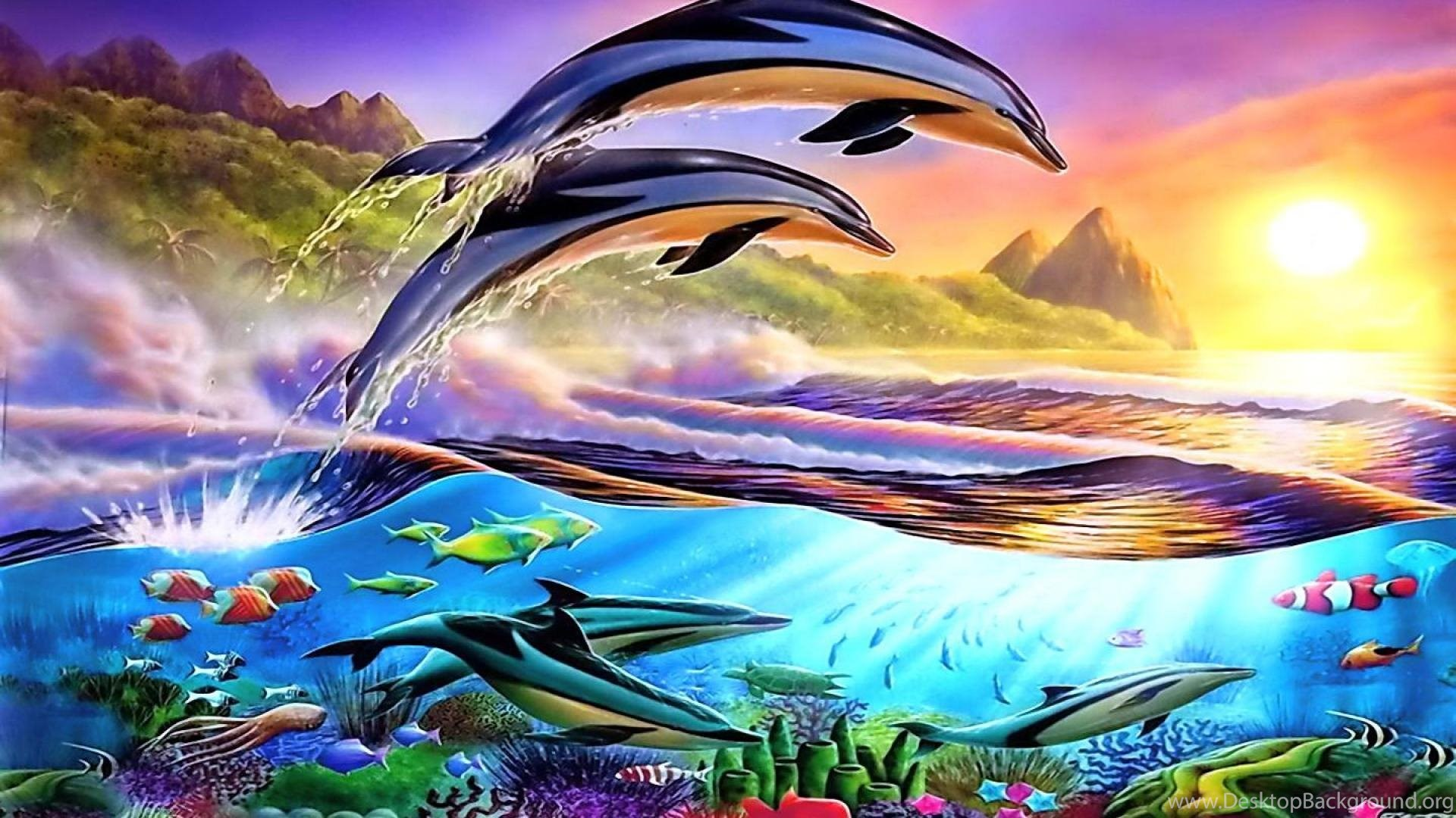 Dolphin wallpapers hd resolution desktop background popular voltagebd Image collections