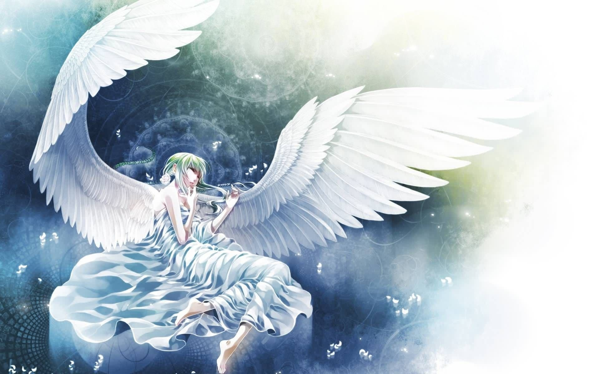 cute anime angel wallpapers hd desktop background