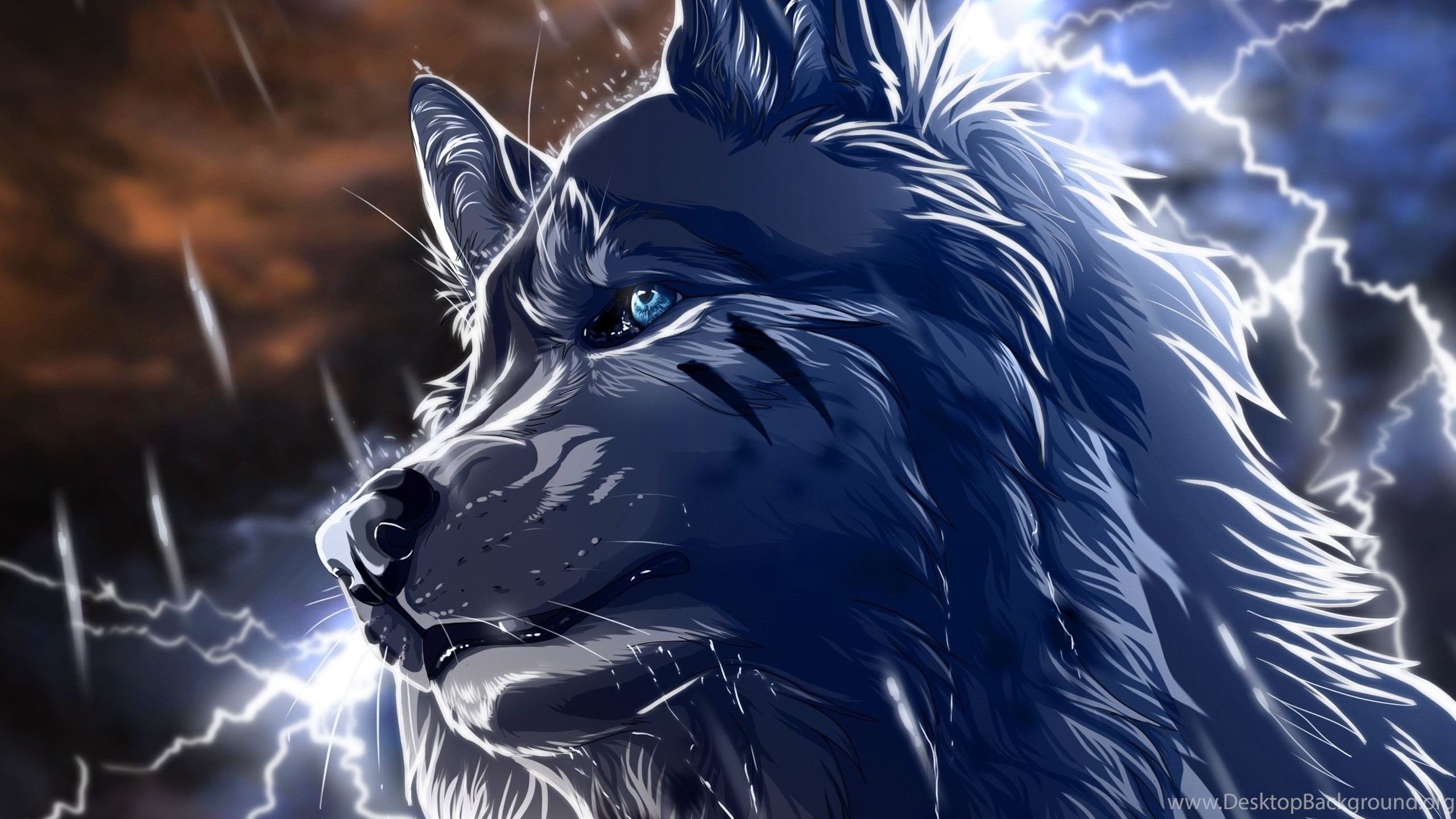 2560x1440 anime wolf wallpapers desktop background - Anime wolf wallpaper ...