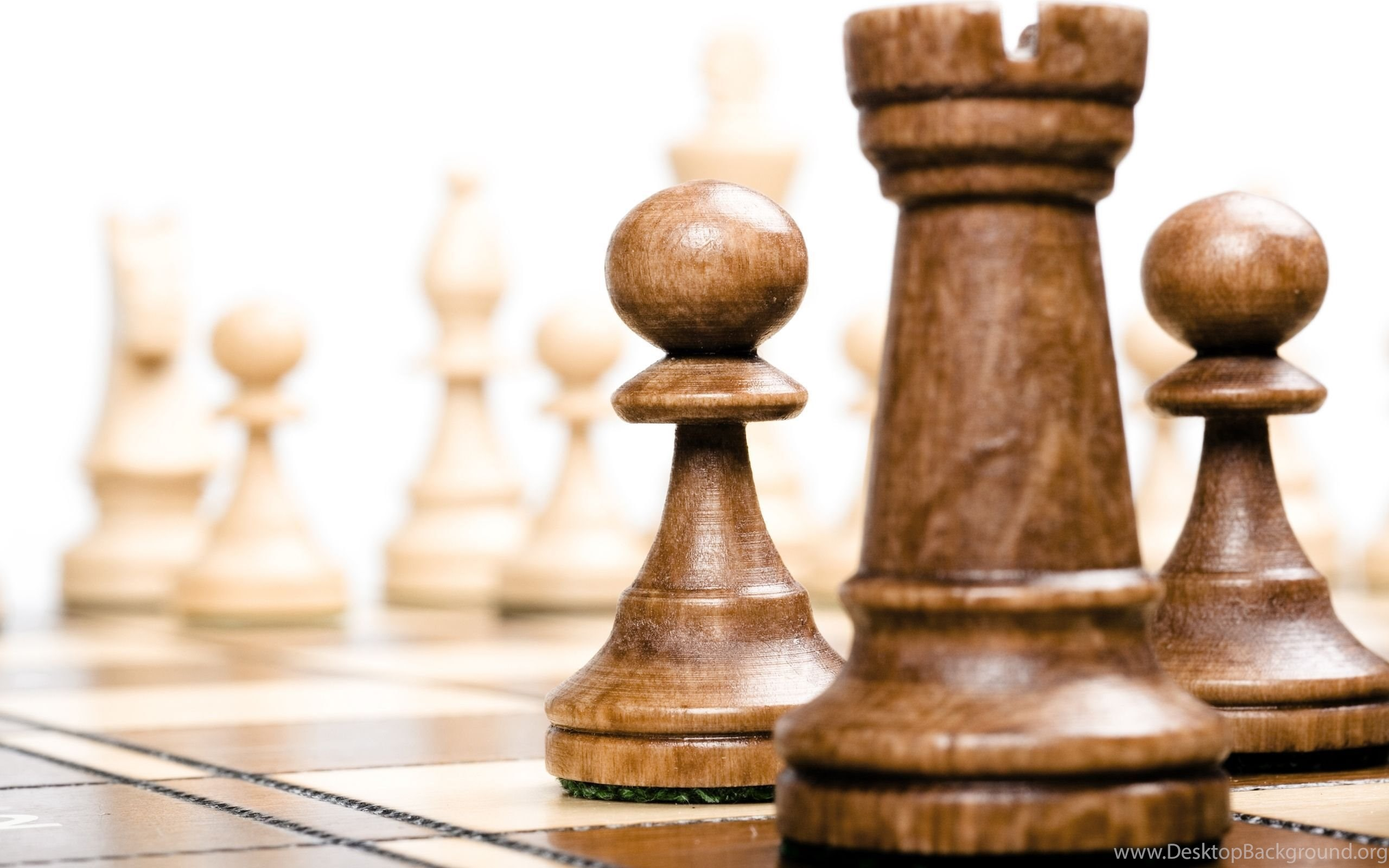 Download Chess Wallpapers HD 2861 2560x1600 Px High Resolution