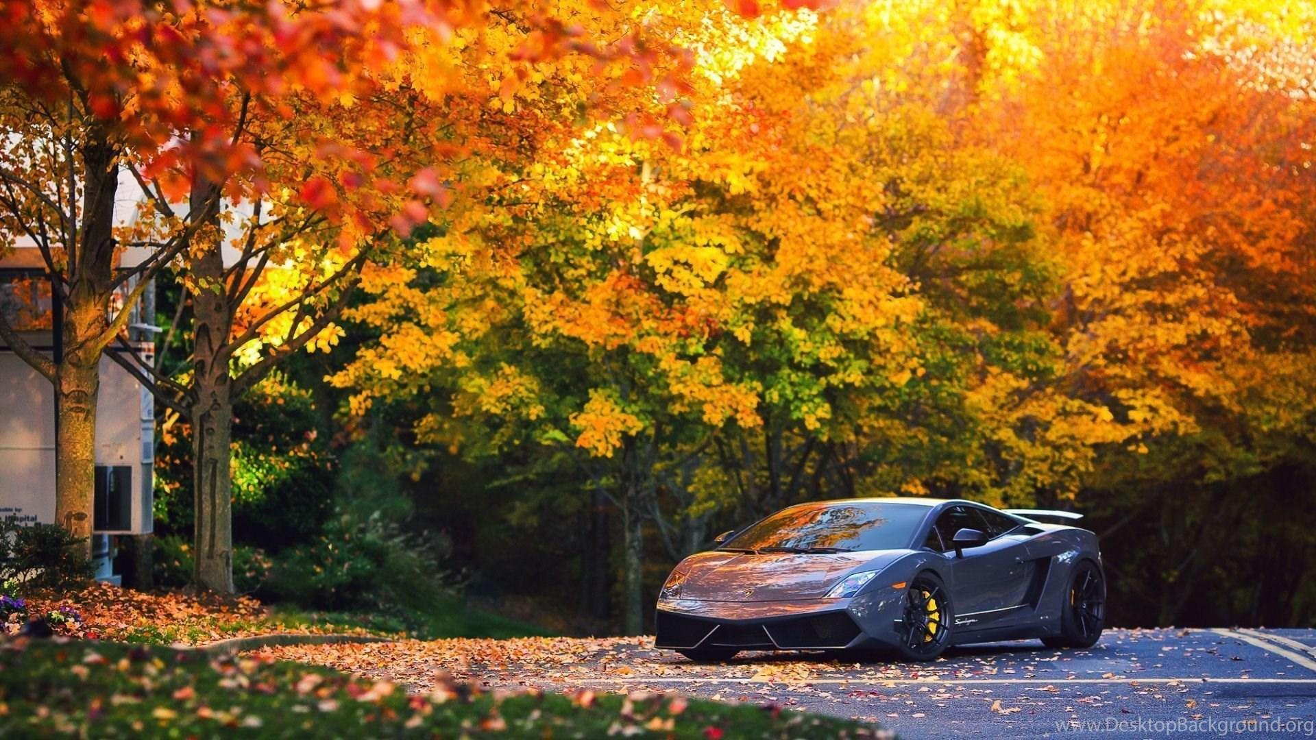 Full Hd 1080p Lamborghini Wallpapers Hd Desktop Backgrounds