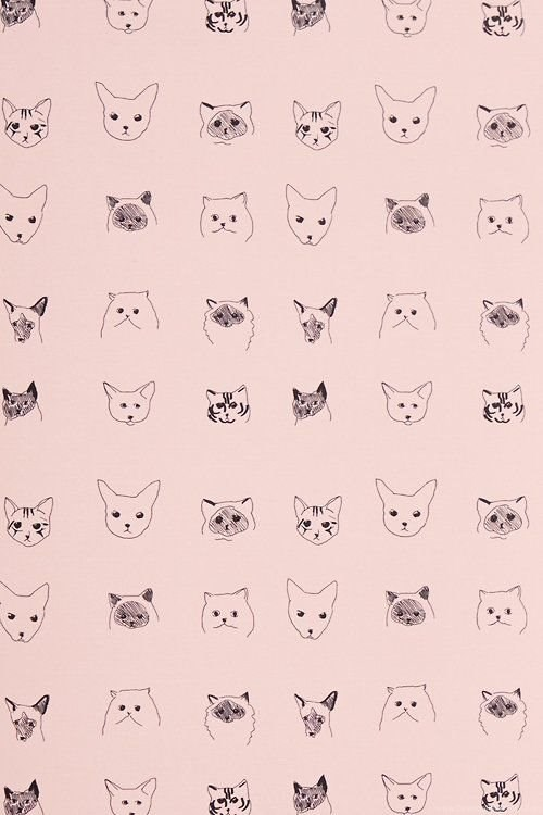 Cats Wallpapers Anthropologie Com Desktop Background