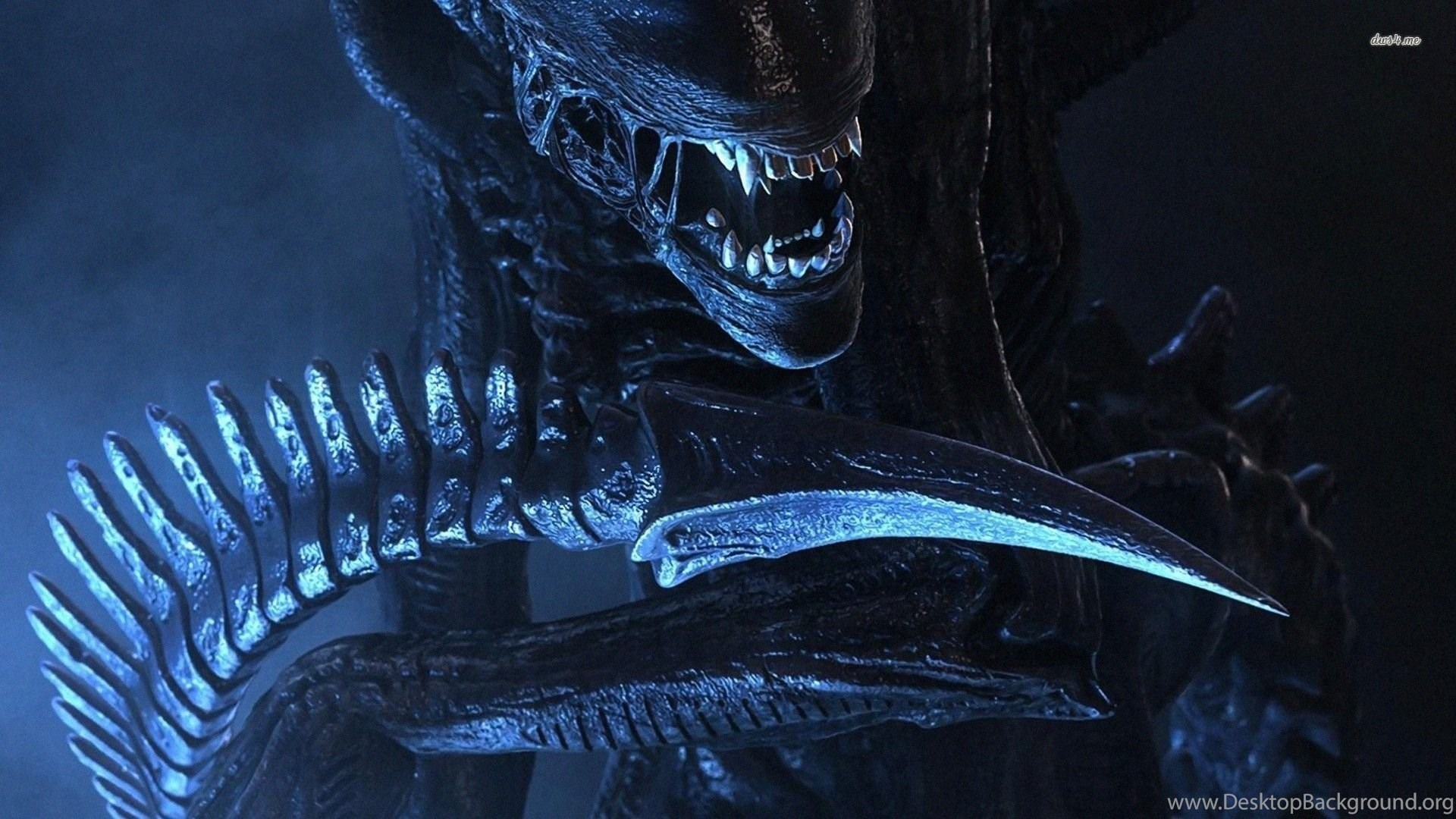 Alien Wallpapers Movie Wallpapers Desktop Background