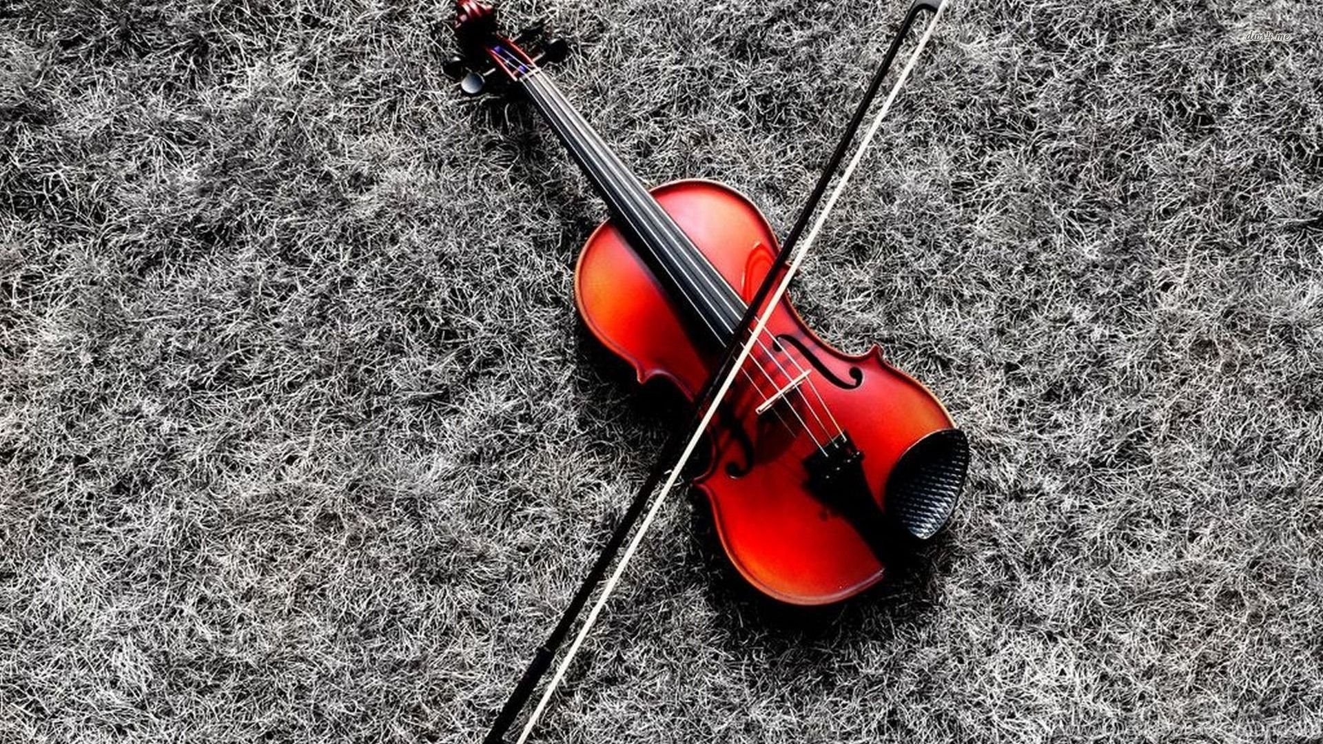 Violin Wallpapers Music Wallpapers Desktop Background