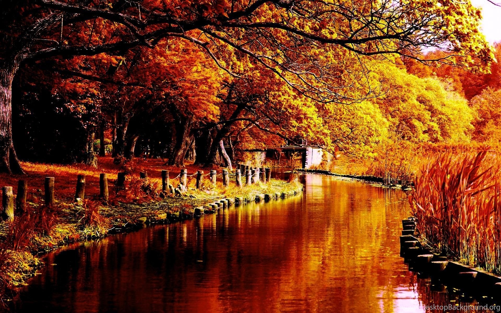 Hd 1080p Fall Wallpaper 79 Images: Autumn Tumblr Wallpapers Picture Desktop Background