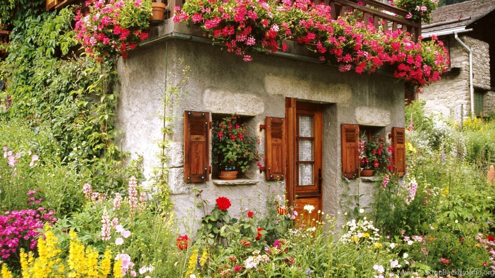 Colorful Desktop Backgrounds Garden Desktop Background