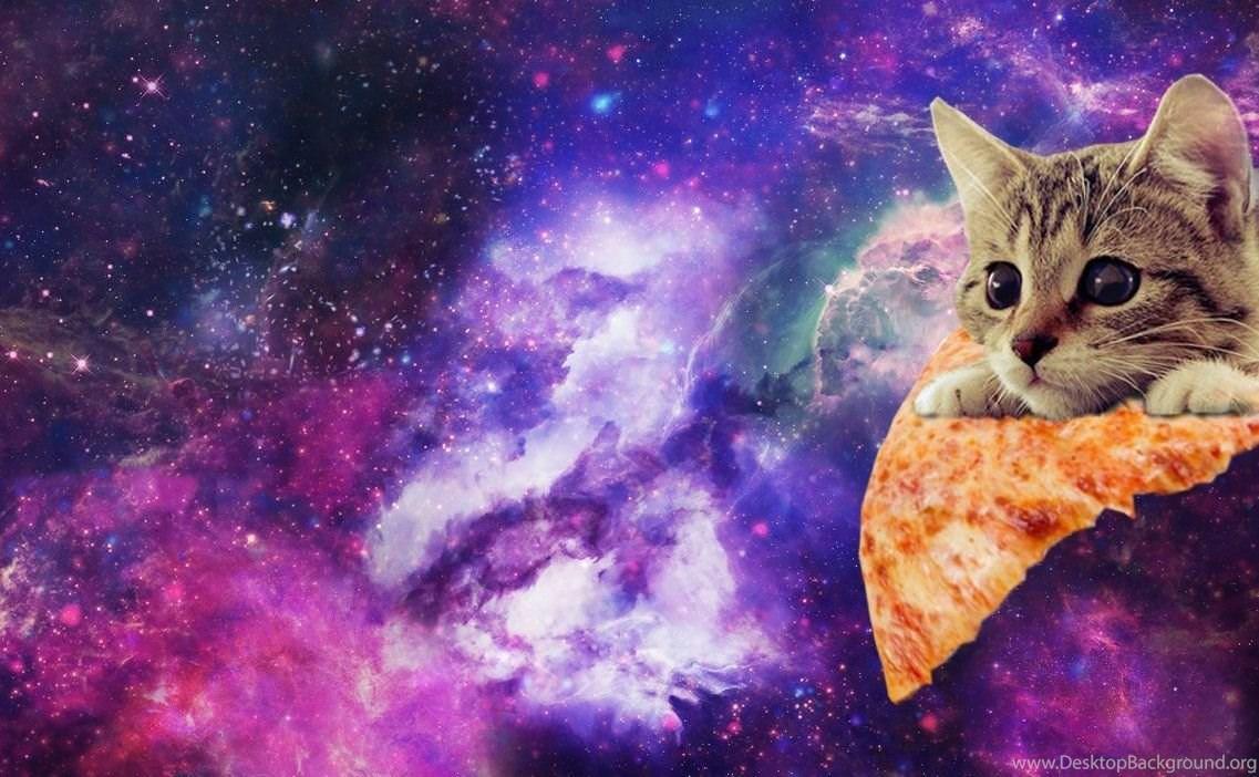 Space Pizza Cat Imgur