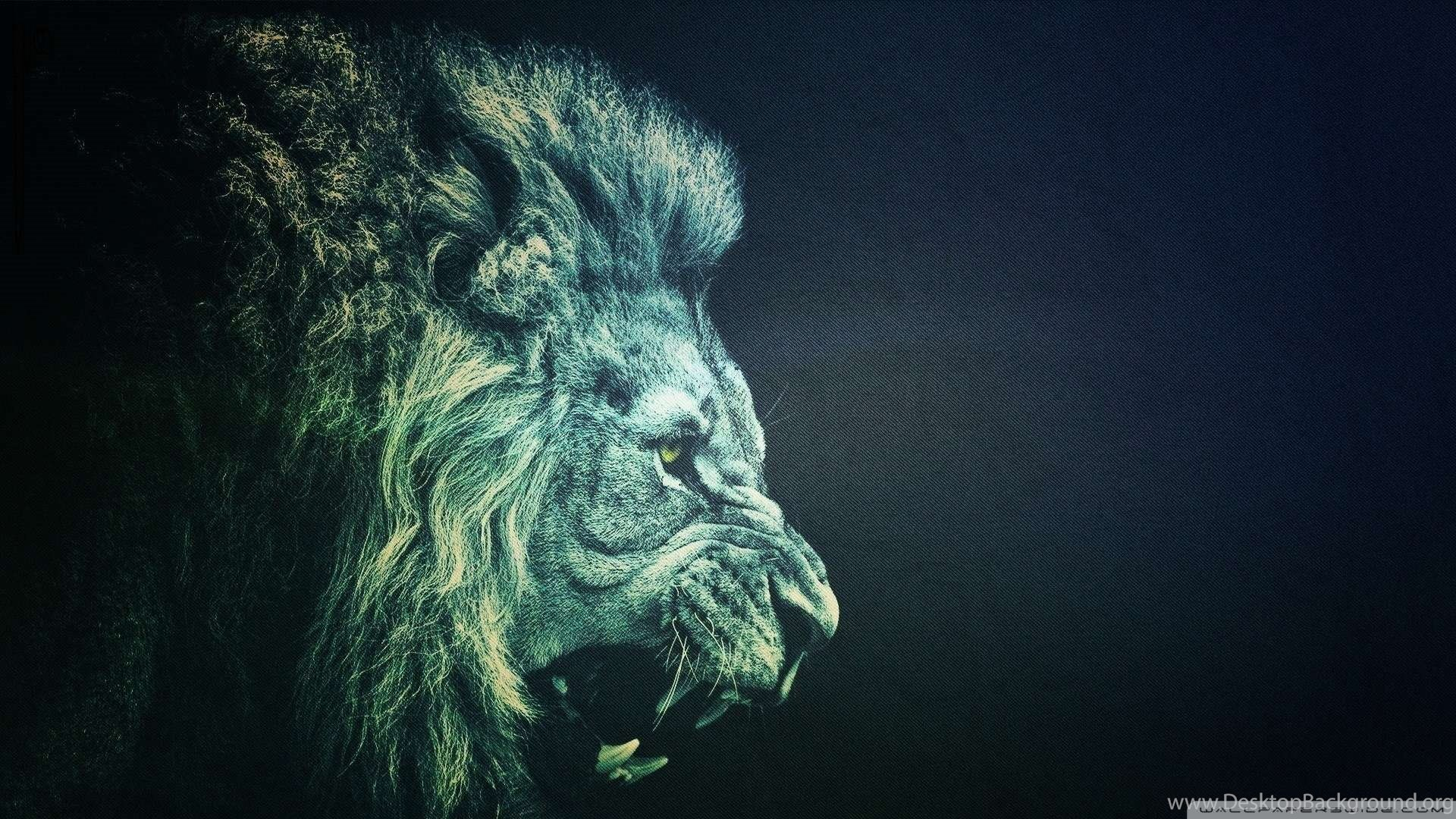 Top Black Lion Hd Images For Pinterest Desktop Background