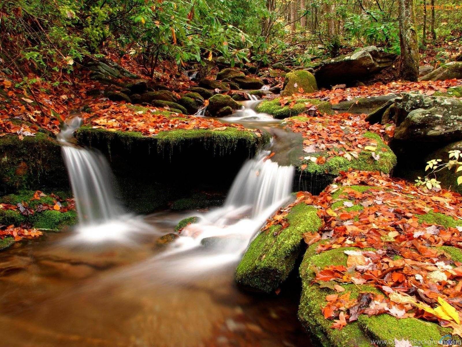 Top 3d Full Hd Nature Wallpaper Images For Pinterest Desktop