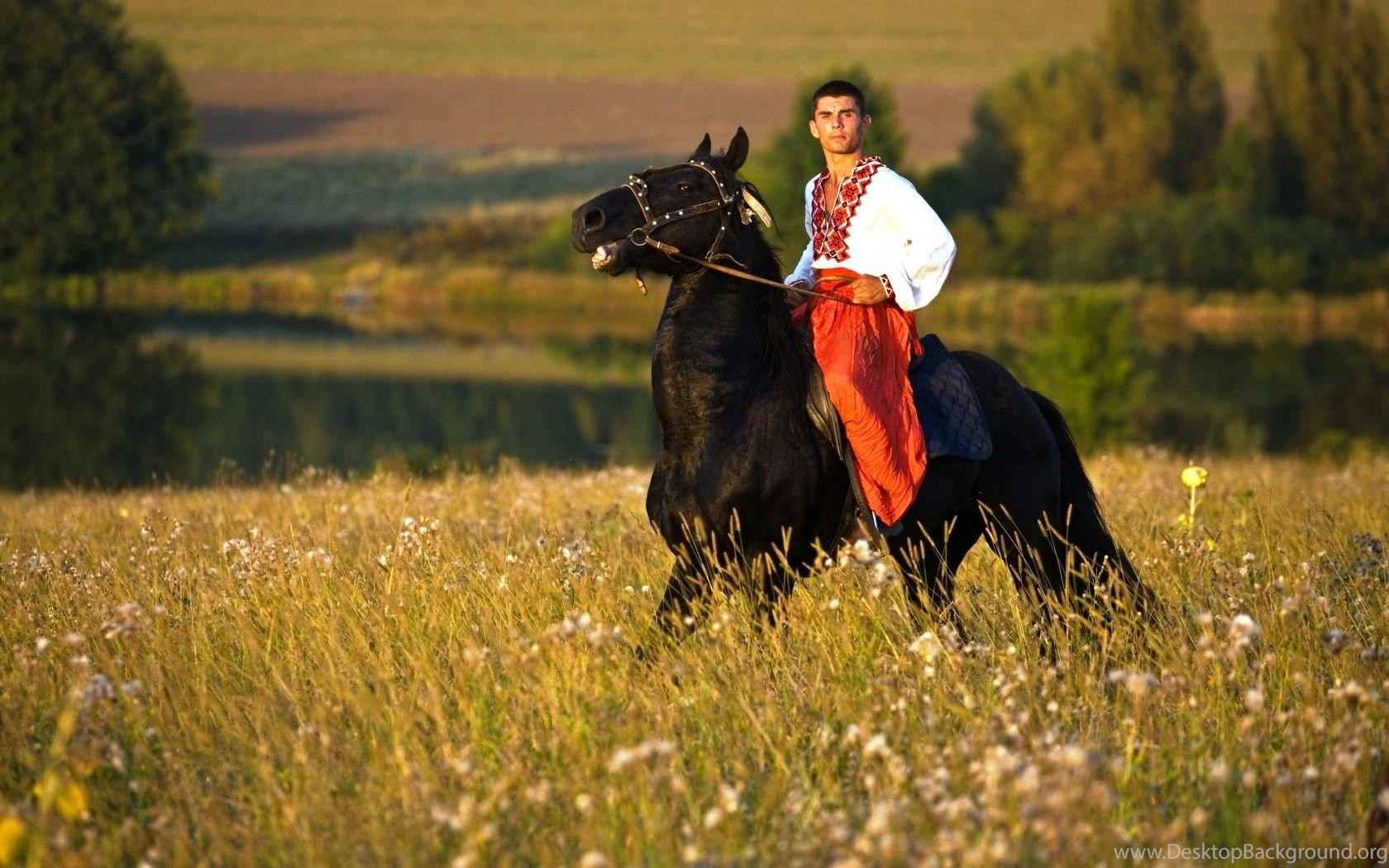 Black Stallion Man Horse Riding Horses Wallpaper Backgrounds Free Desktop Background
