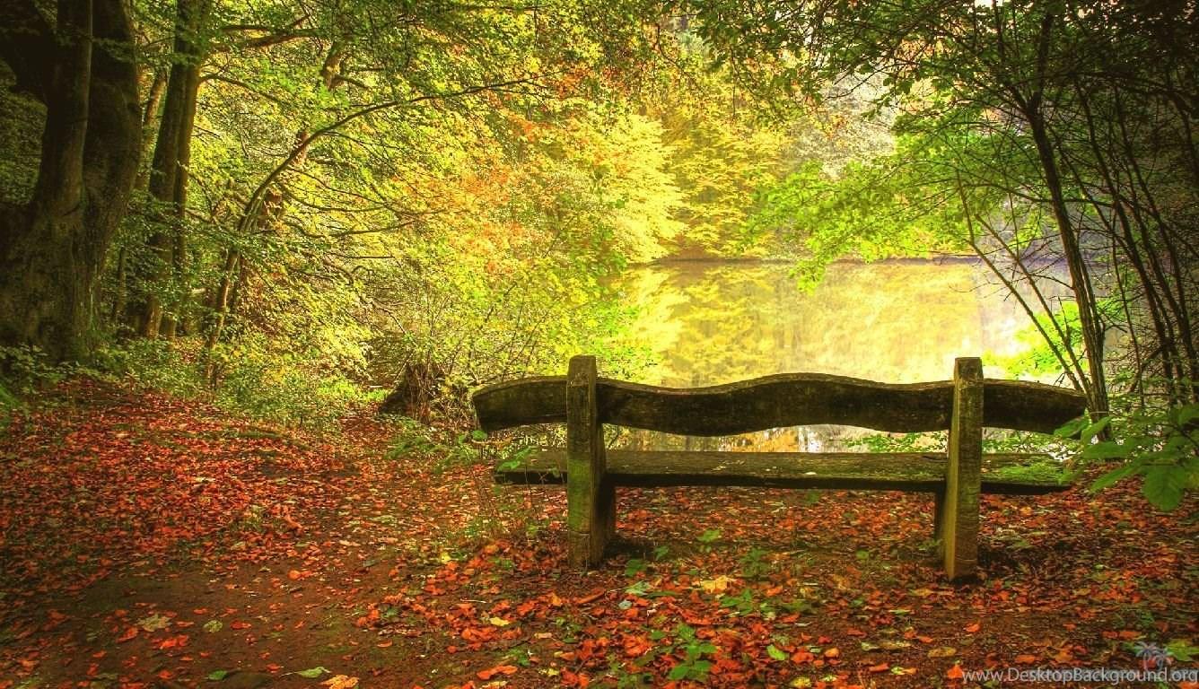 peaceful bench autumn season wallpapers 1336x768 iwallhd  desktop