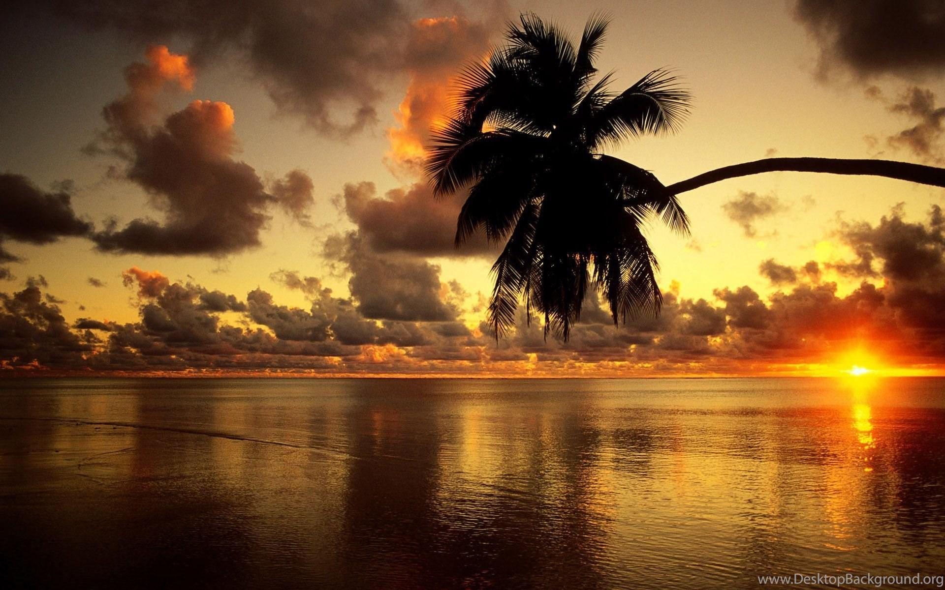 beach clouds sea sky sunrise tree warm hd wallpapers desktop background