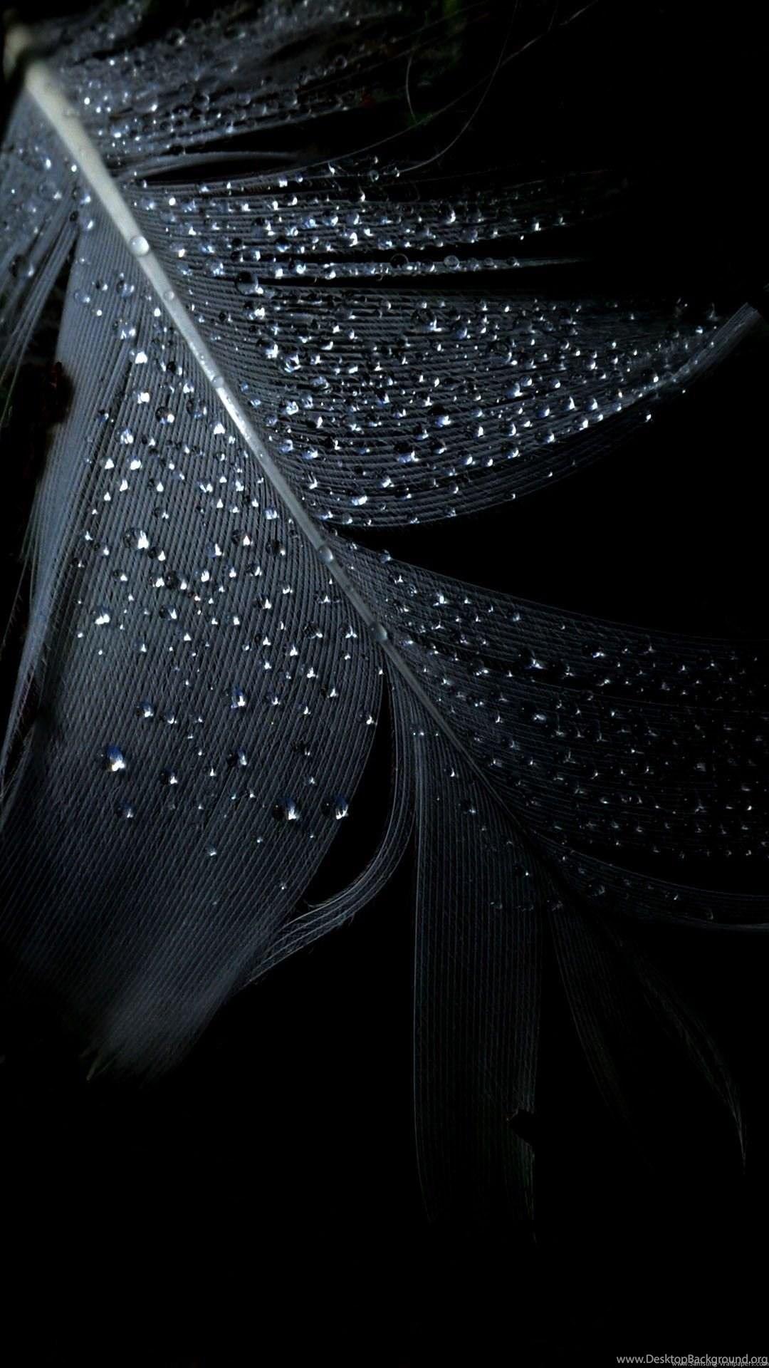 Solid Black Wallpapers Hd Cutewallpaper Org Desktop Background